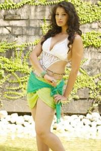 Lakshmi Rai Hot Desi (1)